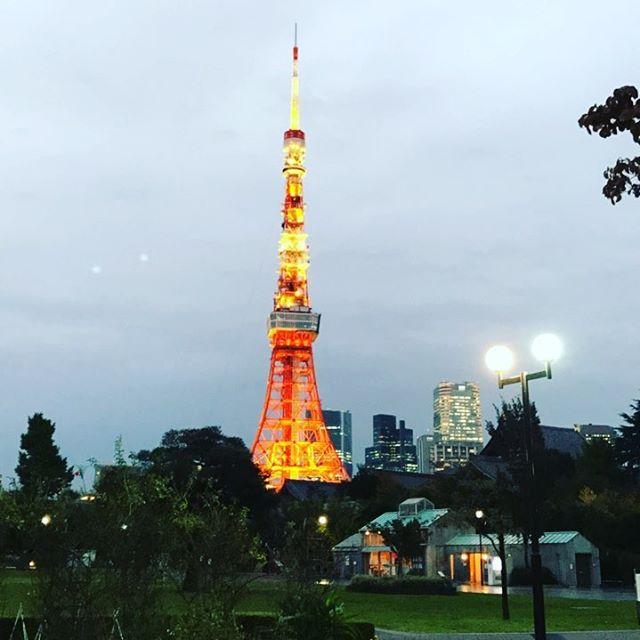 2018年はきちんと更新していきたいと思います#東京タワー#交際クラブ#愛人 #デートクラブ